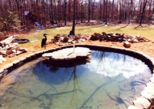 Indigo Pool Designs Glenside Pool Repair Pa 19038 Glenside Pool Construction Pa 19038 23
